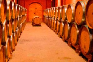 установка винных бочек в погребе для хранения вина фото