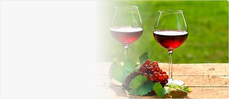 Школа сомелье Wine Masters