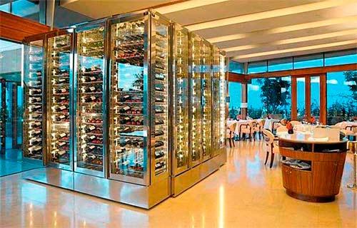 Охлаждающая винная витрина с распашными дверями фото